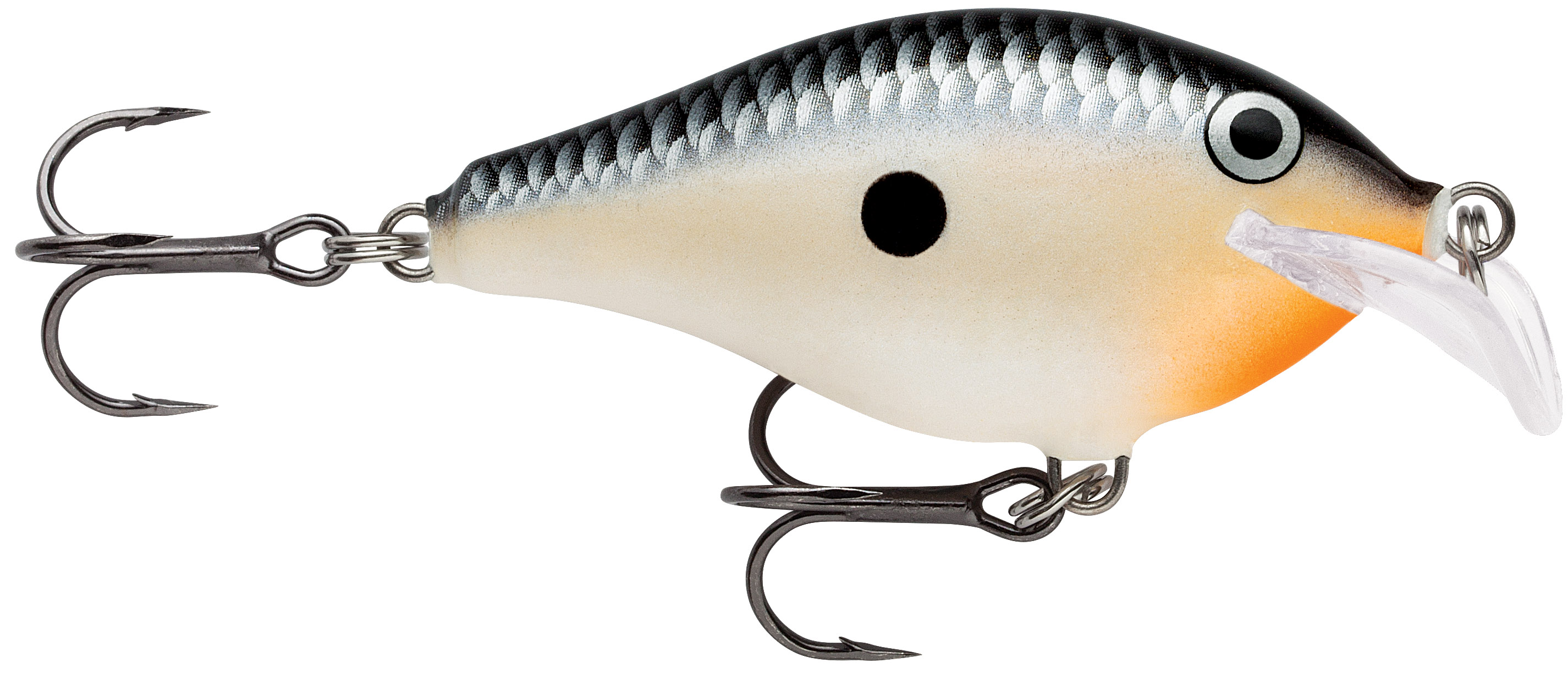 rapala scatter rap shallow